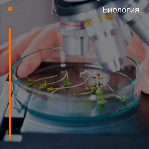 Подготовительные курсы к ЕГЭ по биологии в Казани
